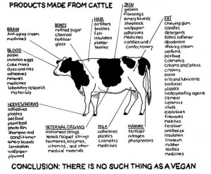 "Looking at this it would be easy to feel you can never be ""vegan enough""."